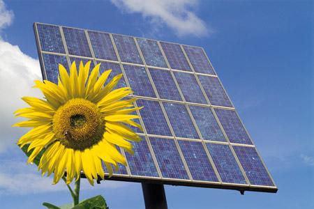Energías Renovables: El futuro pasa por la biomasa o la geotermia