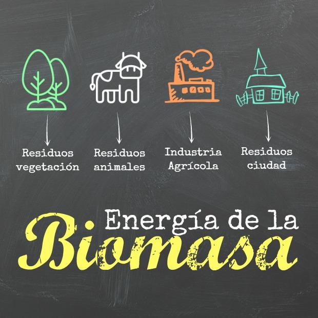 Biomasa: diferentes tipos de Biomasa