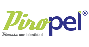 logo-ibiomasapuntonet