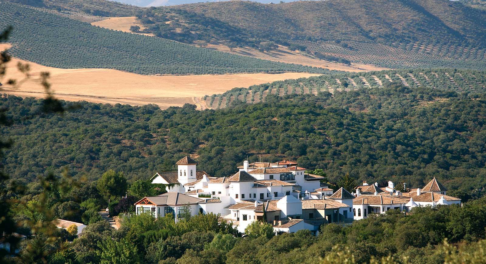 Hoteles con Biomasa: el hueso de aceituna y el turismo