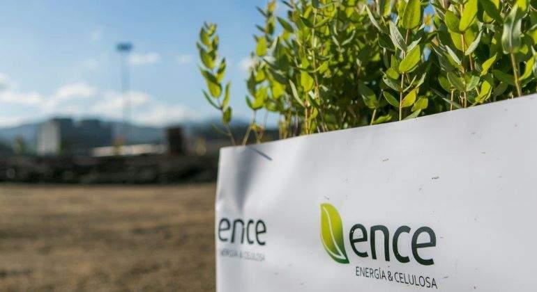 Ence se hace con la planta de generación de energía a través de Biomasa (Orujillo) en Lucena