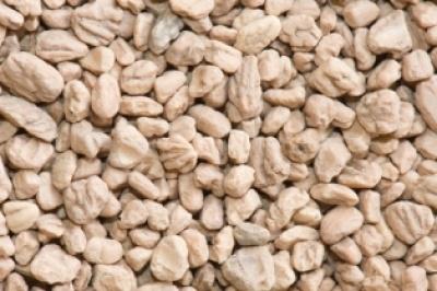 Biomasas mb valorizaci n de hueso de aceituna y - Estufa de hueso de aceituna ...