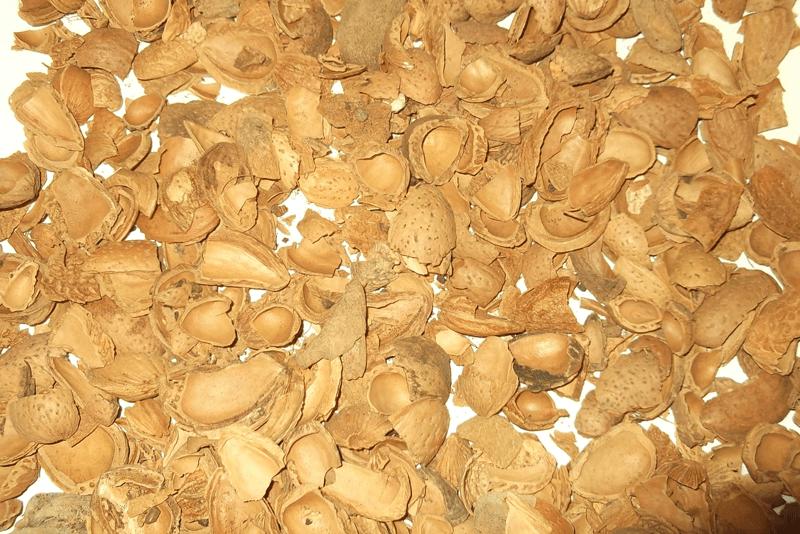 Biomasstep – Que es el Proyecto que mide la calidad de la biomasa